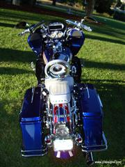 my_bike_041.jpg